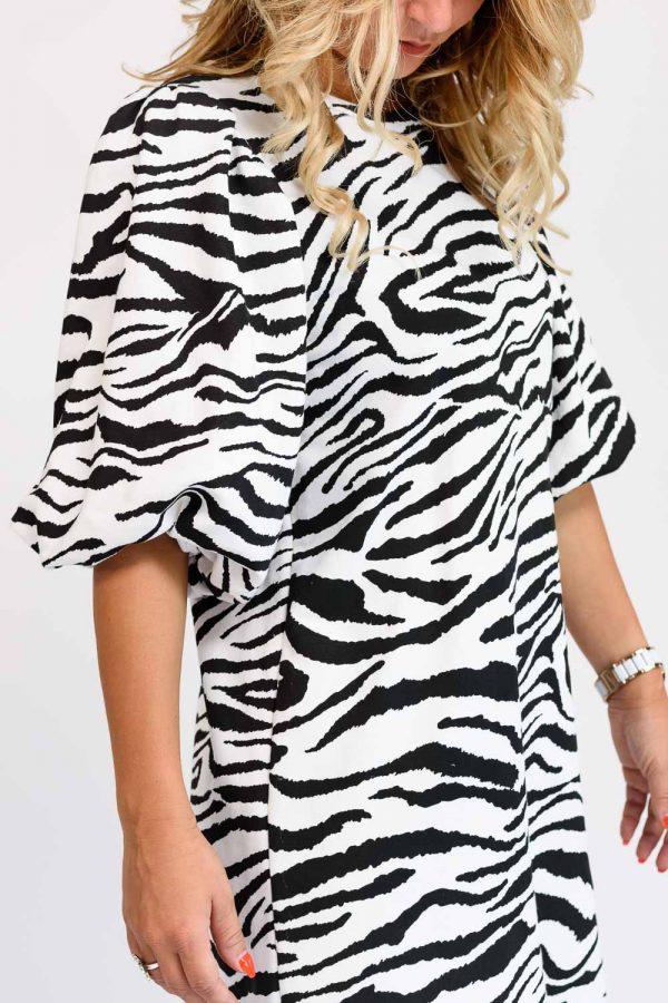 robe zebré femme